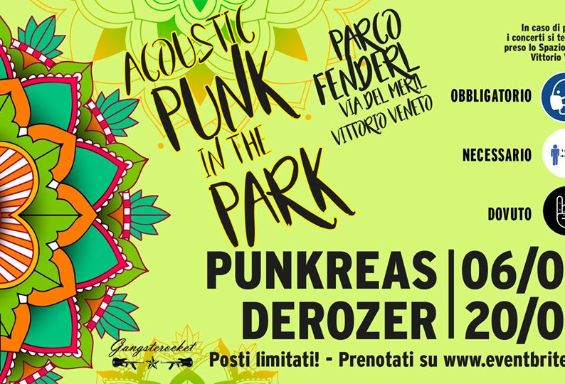 Acoustic Punk in the Park: Derozer
